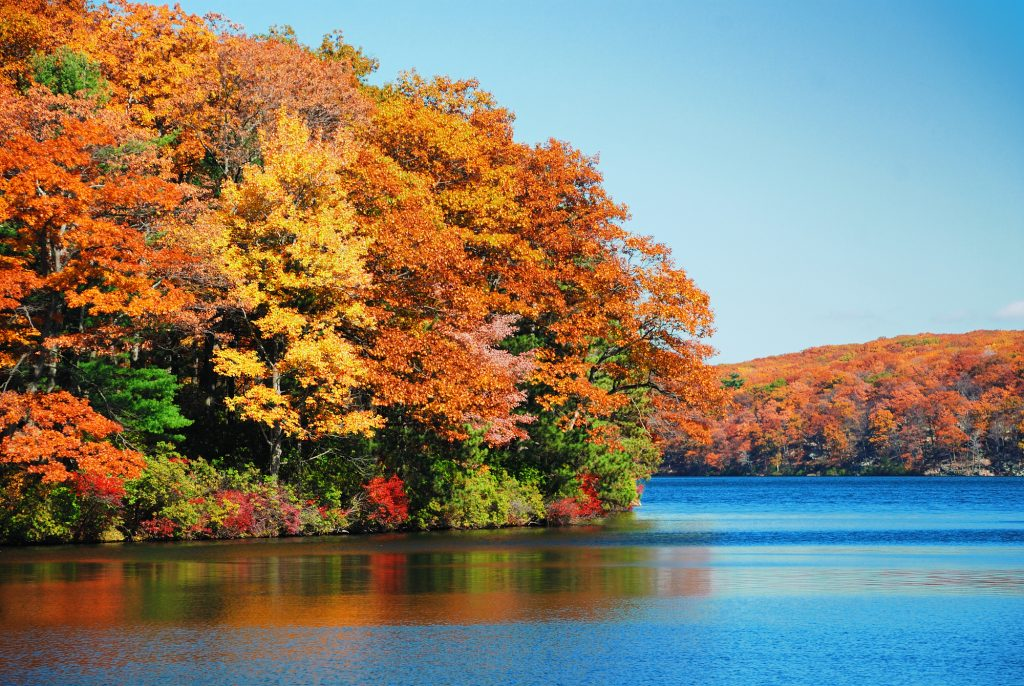 Heuvelachtig en herfstig gebied gelegen om een bijna azuurblauw meer. Tussen de mooie bomen met bruine en rode bladeren zijn ook nog zomerachtige groengekleurde bomen te zien. Het is prachtig weer, het lijkt wel zomer.