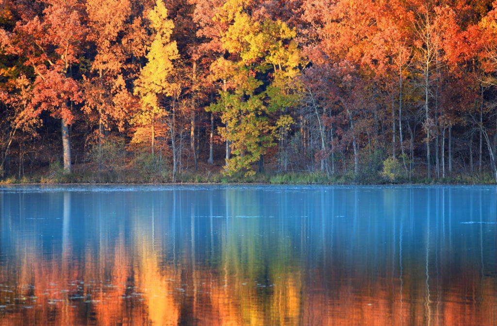 Een uniek blauw meer in het midden van een fenomenaal herfstachtig bos. Prachtige scène op de vroege morgen terwijl de zon opkomt. De reflectie van de herfstgekleurde bomen zijn fantastisch mooi te zien in het lichtblauwe water.
