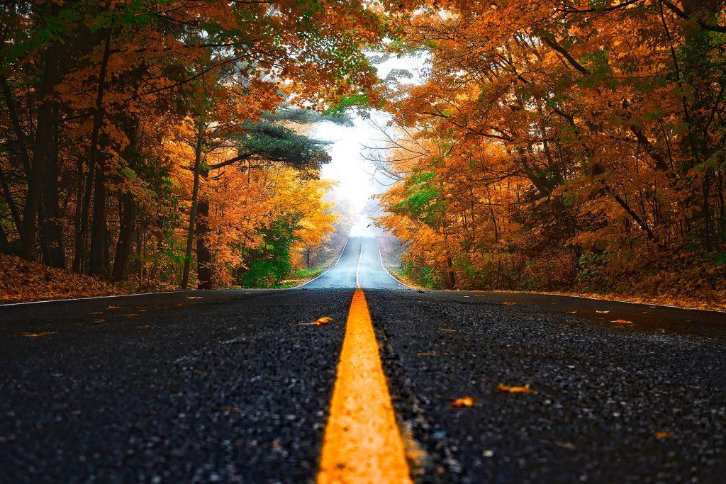 Een prachtig beeld van een lange Amerikaanse weg, met daarop in het midden de herkenbare gele streep. Langs de kant van de weg staan mooie groen en oranje bomen. Een bijzondere weg om bijvoorbeeld met een camper op rond te trekken door het prachtige land de Verenigde Staten.