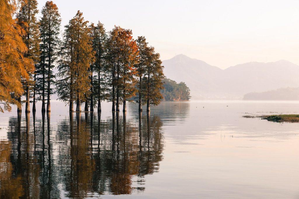 Een groot gebied is ondergelopen met water. De bomen staan onderwater, maar het zorgt wel voor een prachtig beeld. De bomen geven een mooie weerspiegeling in het water. Op de achtergrond is een mooi bergachtig gebied te zien, met zelfs een klein stadje op de bergwand gelegen.