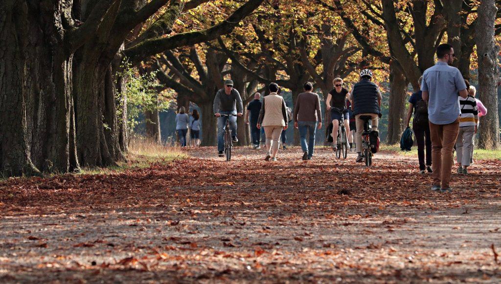 Verschillende mensen genieten van een mooie herfstmiddag. Sommigen fietsen en sommigen wandelen. Het pad ligt vol met bruine herfstbladeren. Ook hangen er nog vele bladeren aan de bomen.