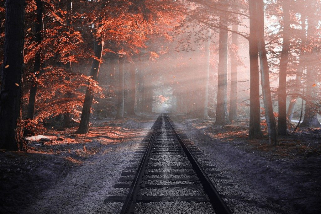 Een lange treinrails die loopt door de bomen. Het zonlicht komt van rechts tussen de bomen door gesneden wat zorgt voor mooie lichtlijnen. De bladeren zijn al mooi rood. Een bijzonder herfstbeeld.