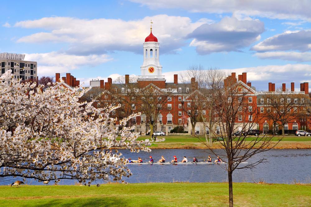 Boston harvard