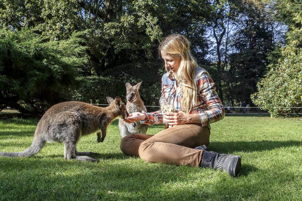 Brisbane, Australië student