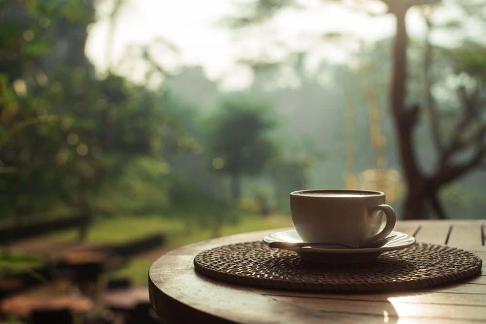 Golden Kirin Coffee Factory tour